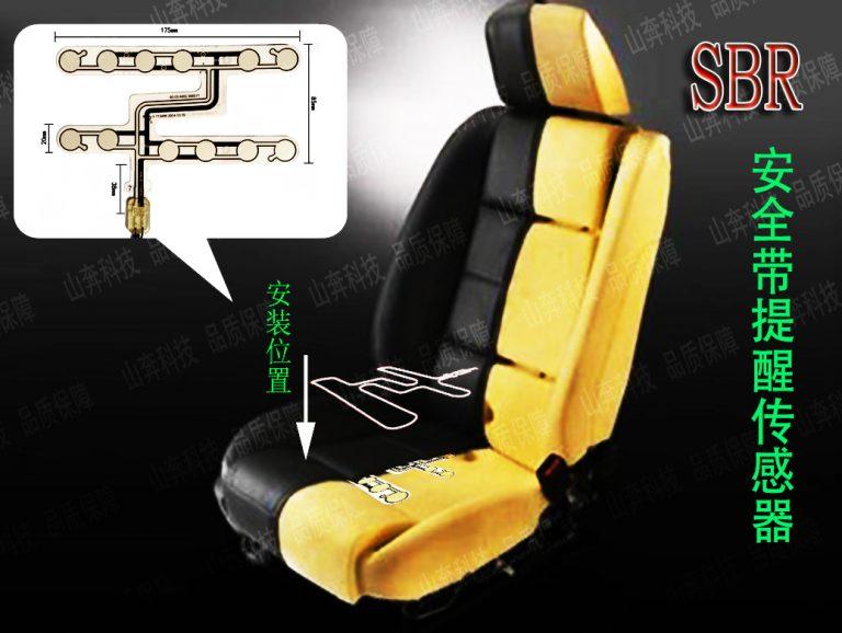 Seatbelt Reminder_Shanben01